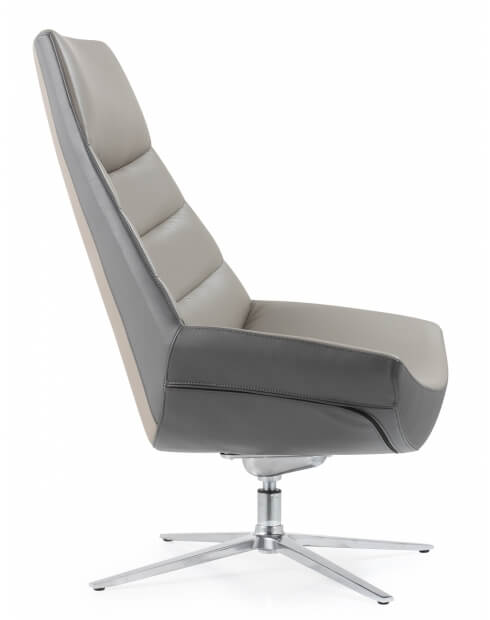Allen Lounge Genuine Leather Chair