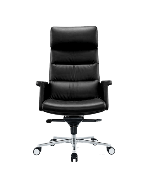 Front -Eagle High Back Padded Executive Chair