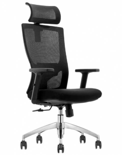 Mann Ergonomic Executive Office Chair