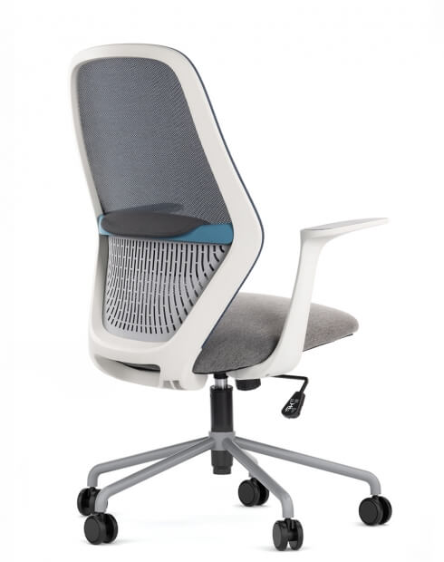 Time White Frame with Blue Trim Minimalist Task Chair