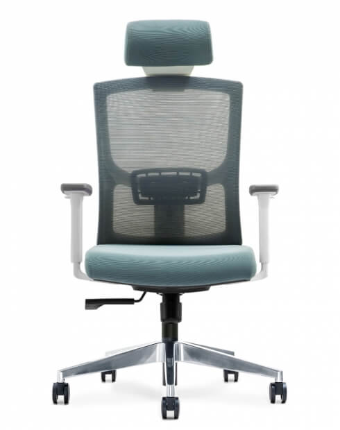 Back - Newman Cool Grey Ergonomic Executive Office Chair