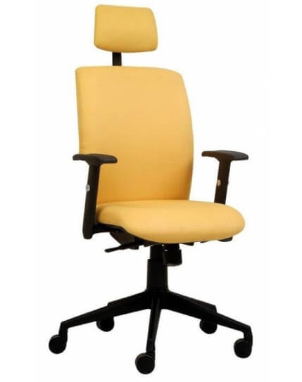Medi High Back Chair with Padded Head Rest