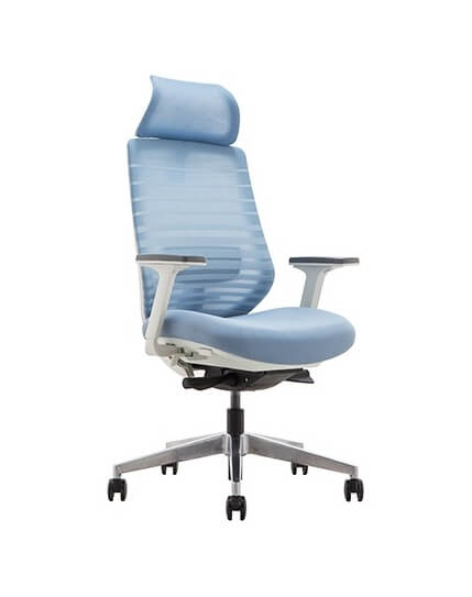 Spirit Sapphire Donati Ergonomic High Back Chair